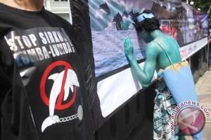 Koalisi Penyelamat Satwa Lanjutkan Protes Sirkus Lumba-lumba