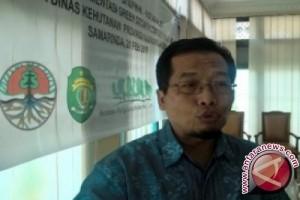 TNC Dampingi Kampung Merabu Untuk Pengelolaan Hutan