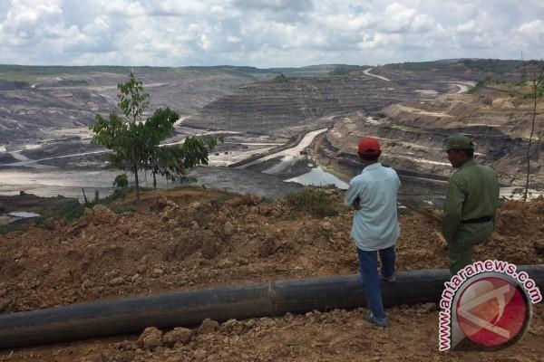 124 Hektare Sawah Gagal Panen Akibat Limbah Tambang