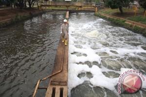 WHO: Dua Miliar Orang Konsumsi Air Terkontaminasi Tinja