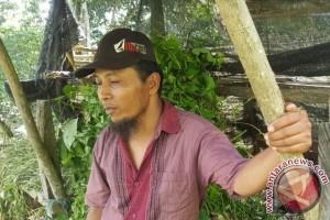 Warga Samarinda Diresahkan Munculnya Binatang Buas Pemangsa Ternak