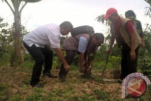 Dosen UGM Sarankan Samarinda Tetapkan Garis Sempadan