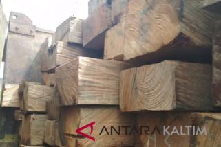 Polisi Penajam amankan kayu meranti ilegal