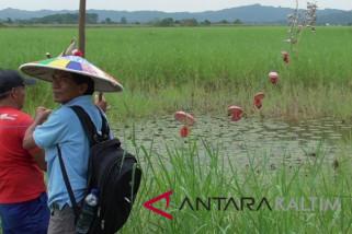 Layanan ekosistem untuk benahi SKM Samarinda