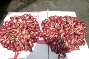 Pasokan Bawang Ke Lampung Tersendat