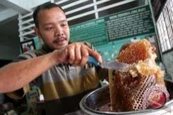 Sulsel Ekspor Madu ke Malaysia Dua Ton