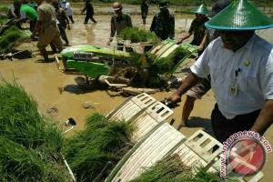 Papua Barat Targetkan 120.000 Ton Produksi Beras