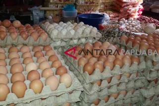 Harga Telur di Kota Sorong Naik