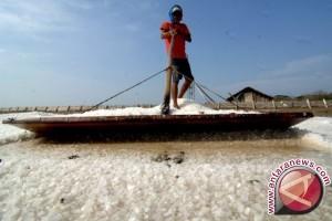 Disperindag : stok garam Sumut 30.000 ton