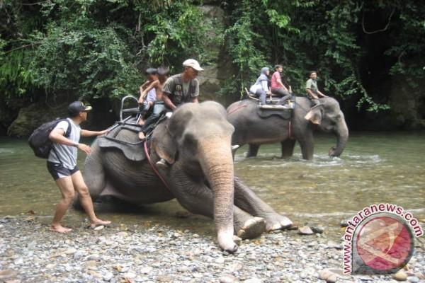 Kunjungan wisatawan ke Sumut turun