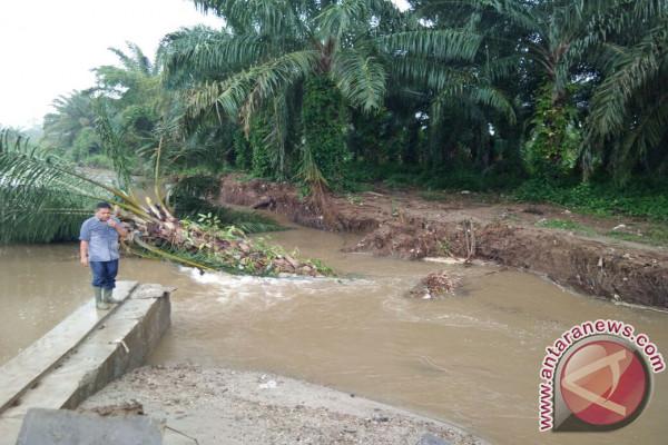 Irigasi Jebol Ancam Ratusan Hektare Sawah