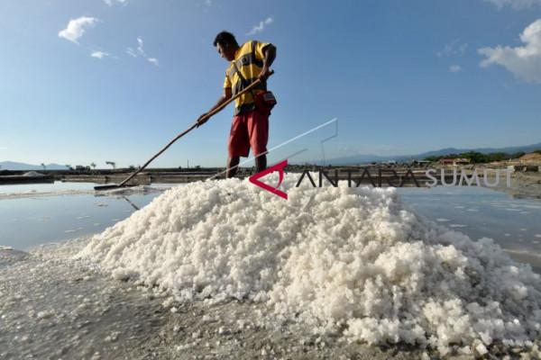 Impor garam tidak sesuai rekomendasi