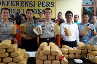 Polisi  gagalkan peredaran 96 kilogram ganja