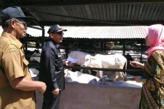 Pemprov Sumut salurkan bantuan  4.016 ekor ternak