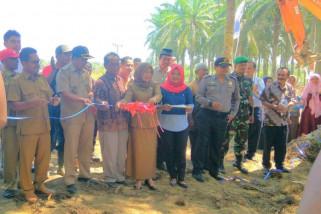 Program Peremajaan Sawit Rakyat  mulai dilaksanakan