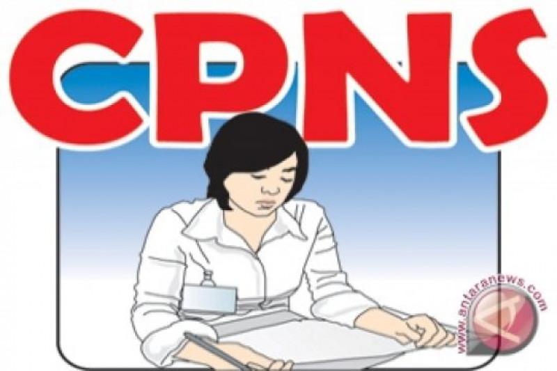Verifikasi administrasi sisakan 2059 pelamar CPNS Taput