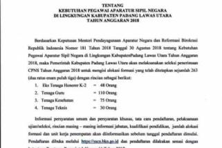 Pemkab Paluta umumkan formasi 263 CPNS 2018