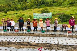 Bawang Merah dan Aplikasi TOBAsmile wujud nyata dukungan BI untuk Danau Toba